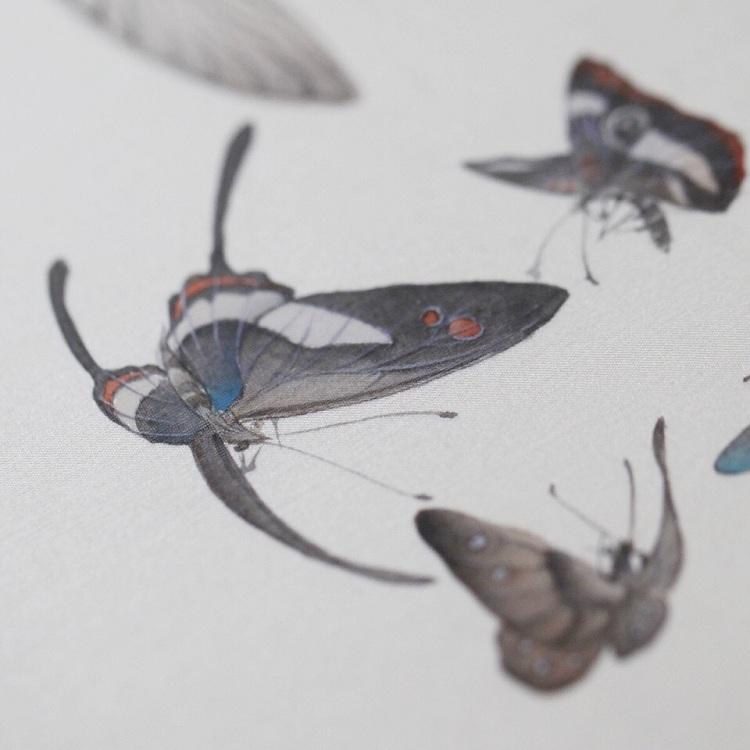手绘群蝶春戏图团扇